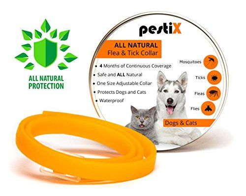 All Natural Flea Prevention Collar For Dogs And Cats Collar Prevents Controls Removes And Repels Pests One Size Adjustable Collar With 4 Months Of Coverag With Images Cat Fleas