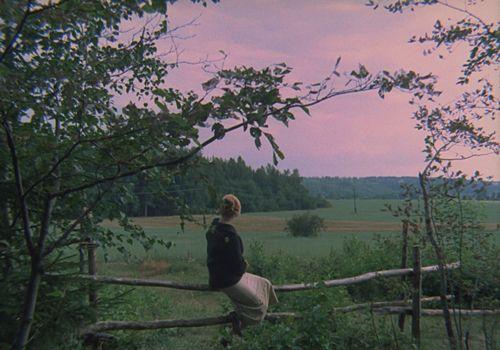 The Mirror (dir. Andrei Tarkovsky — 1975)