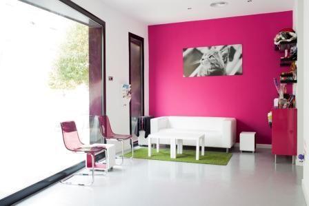 Recepci n y sala de espera cl nica veterinaria kato - Diseno de clinicas veterinarias ...