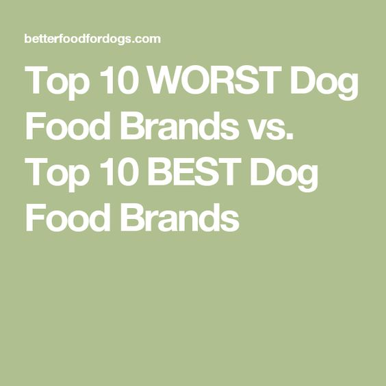 Best And Worst Dog Foods Uk