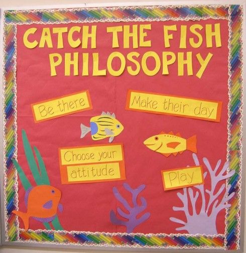 Bulletin boards digital cameras and olympus digital for The fish philosophy