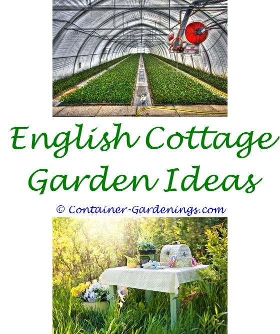 Container Garden Plans Narrow garden Garden ideas and Vegetable