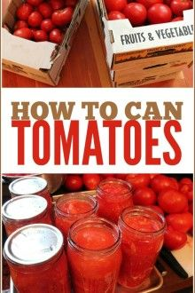 Canning Tomatoes: Step-by-Step Guide