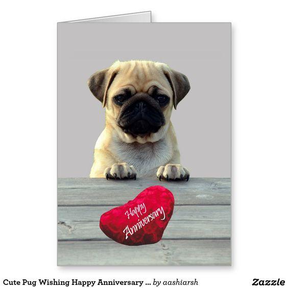 cute pug wishing happy anniversary greeting card puppy animal