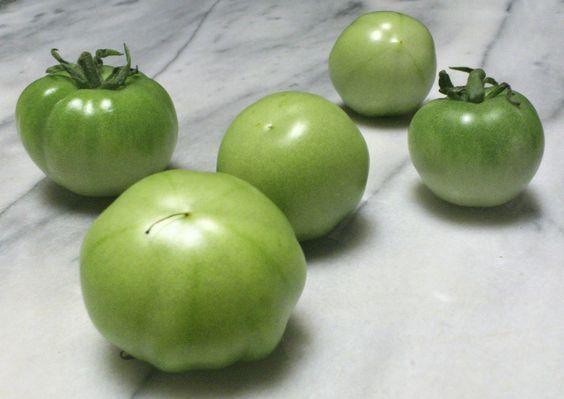 青いトマト。A green tomato.