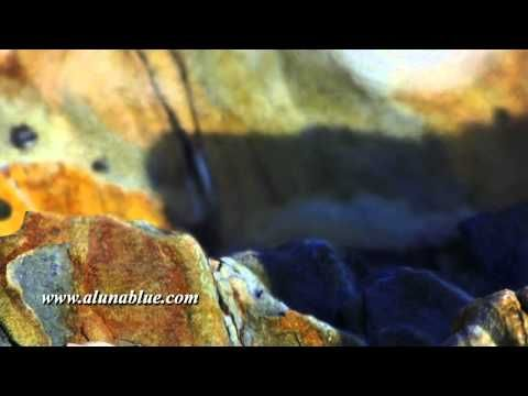 A moody ocean mist drifts over rocks (Loop).   Purchase this clip at A Luna Blue:  http://www.alunablue.com/nature-stock-footage/hyper-nature/hyper-nature-01/clip-02.html   A Luna Blue Stock Video.  Imagery for Your Imagination.  http://www.alunablue.com
