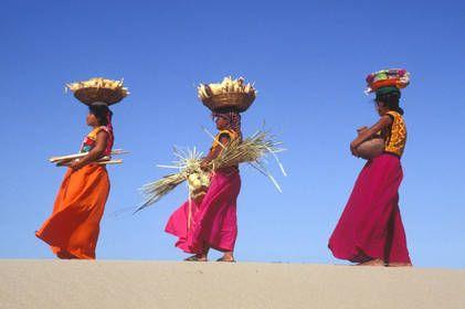 Peuples Autochtones| FAO | Organisation des Nations Unies pour…