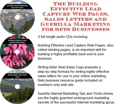 The Guerilla Marketing Building Effective Lead Capture Web Pages - successful sales letter tips