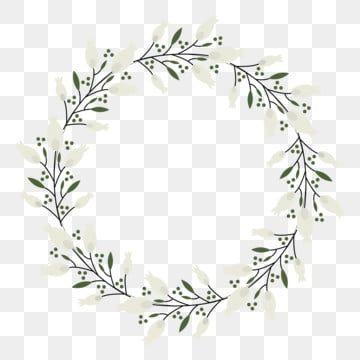 دائرة الإطار زهرة ناقلات Clipart الأبيض عنصر بابوا نيو غينيا دائرة إطار دائري ديكور Png والمتجهات للتحميل مجانا Flower Frame Frame Border Design White Anemone Flower