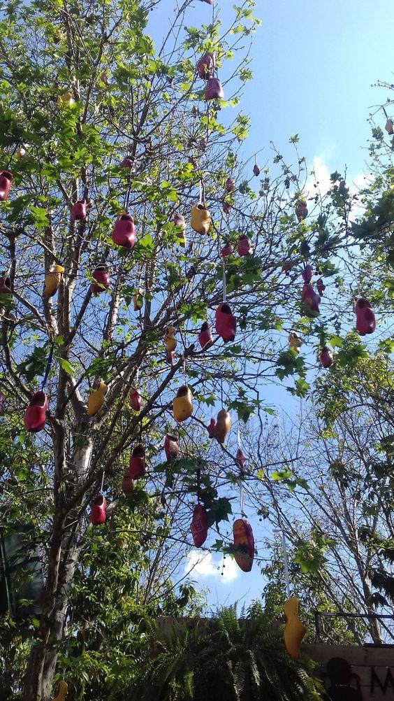 Árvore de Tamancos Coloridos. Holambra/SP #Expoflora2016 #CidadedasFlores