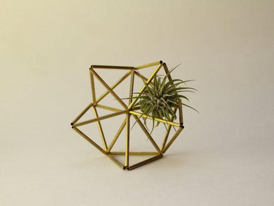 Geometric air plant holder Brass Planter by meandshestudios