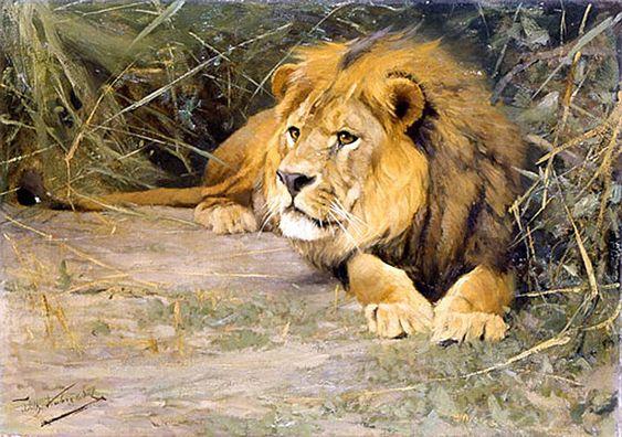 Oil-paintings of Lions by Wilhelm Kuhnert (German, 1865-1926)