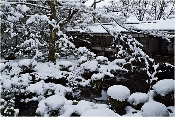 三千院 雪 - Google 検索