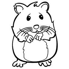 The Nervous Hamster Tiergemalde Malvorlagen Zum Ausdrucken Kostenlose Erwachsenen Malvorlagen