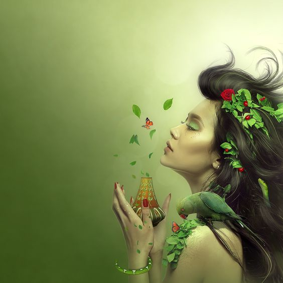 Spring Wallpaper by *JtotheOtotheE  \/ Wallpaper