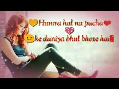 hamara haal na pucho ye duniya female || whatsapp status