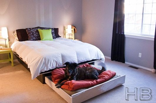 trundle dog bed. Love. Love. Love this!!!!!