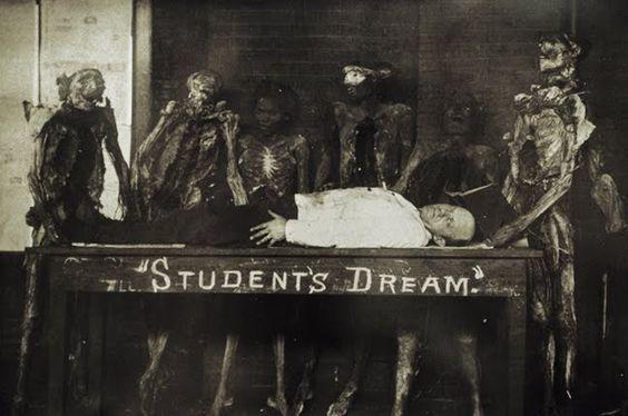 """Student's Dream"""