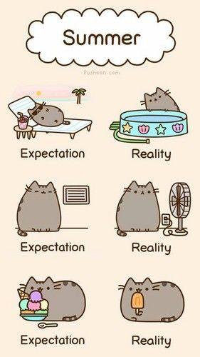 Summer fun pusheen the cat photo 37024757 fanpop for Fun to draw cat