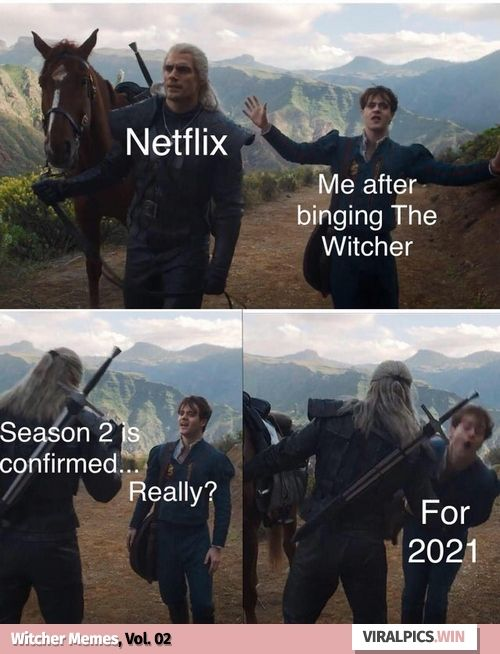 30 The Witcher Netflix Funny Memes For True Fan Of The Game