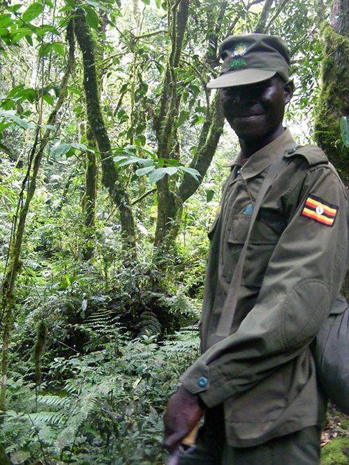 """A smiling Uganda Wildlife Authority ranger, one of our guides as we hiked across across Bwindi Impenetrable Forest, Uganda """"How to hike Bwindi"""" http://muzungubloguganda.com/2015/09/bwindi-hiking-gorilla-trekking-uganda/"""