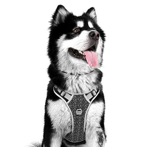 Koneseve Dog Harness No Pull Adjustable Dog Vest Harness Https Www Amazon Com Dp B07w4whmxh Ref Cm Sw R Pi Awdb T1 X Fyeteb9ejc80p In 2020
