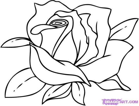 how to draw a rose step by step - Google Search | draw ... How To Draw A Rose For Mothers Day