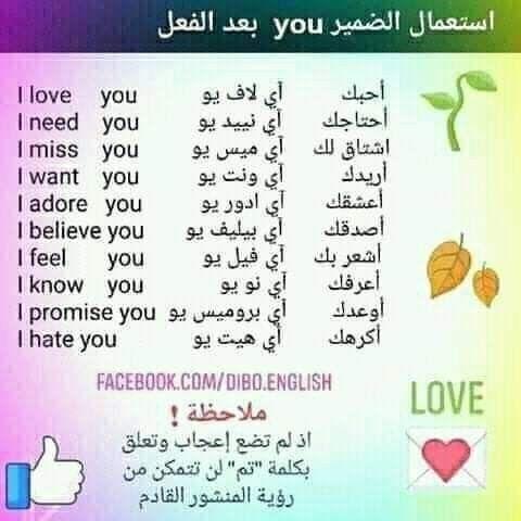 Learning Arabic Msa Fabienne Learn English Words English Vocabulary Words Learning Arabic