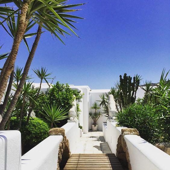 #KivotosHotel #Mykonos #Greece #OrnosBay #GreekIsle #Travel #HotelLife #Travel #LoveGreece Katrina Woolverton | Gallery
