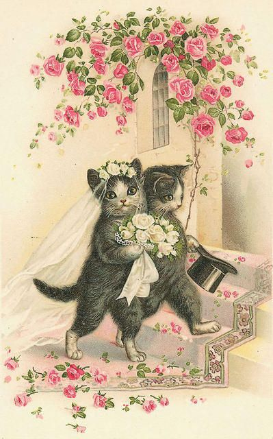 Vintage cat card bride groom wedding seeing as i am for Crazy mural lady
