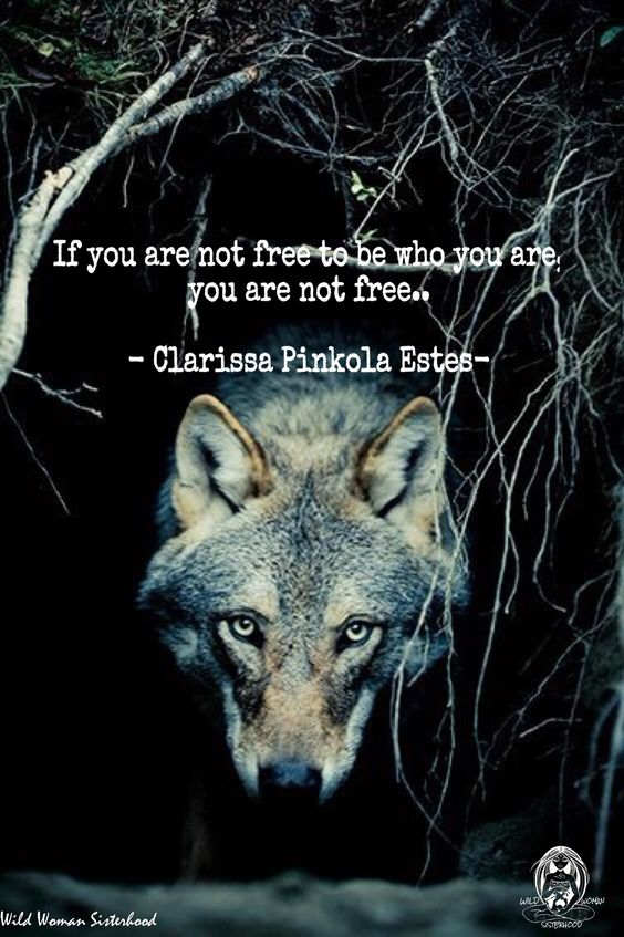 Image result for free images of wild woman sisterhood