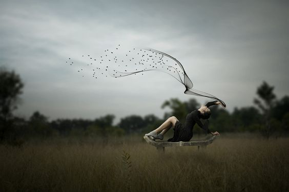 Dream of fly by pink sword on 500px