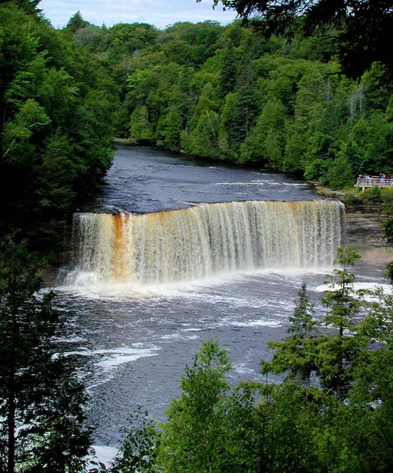 The Upper Tahquamenon Falls is in the heart of the remaining UP forests. The water that churns through this cataract is stained by tannin from the forest.