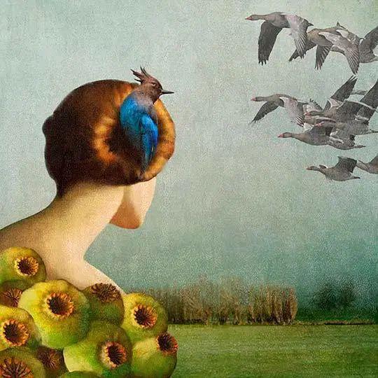 Daria Petrilli © #Ilustración – #Surrealismo « RegaloyArte