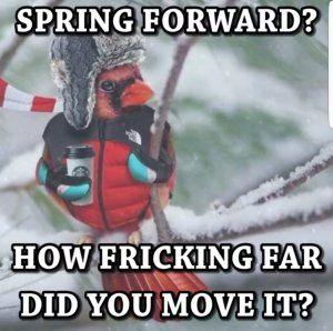Empire Bbk Spring Funny Winter Humor Funny Weather