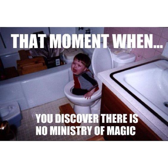 That moment when you discover there is no Ministry of Magic.