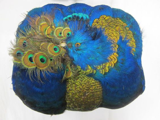 Muff | Harvey Williams Ltd. | V&A Search the Collections. Ornithology.:
