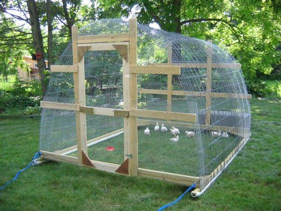 Love the pvc on the skids uses cattle panel for strength for Pvc chicken house