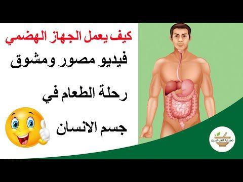 كيف يعمل الجهاز الهضمي رحلة طعام مصورة داخل جسم الانسان Youtube Learn Arabic Alphabet Learning Arabic Youtube