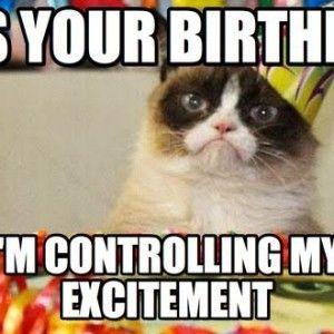 Bildergebnis für Birthday Funny Cat