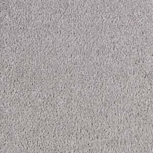 TrafficMaster Going forward - Color Modern Grey 12 ft. Carpet-0189D-35-12 at The Home Depot