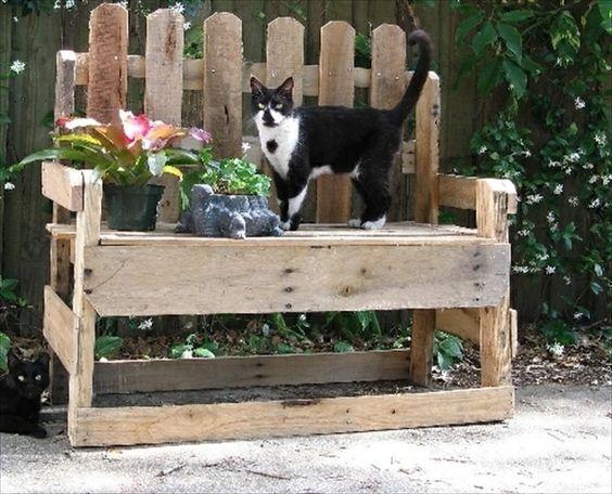 Gartenmobel Teakholz Gebraucht : einer bank aus paletten und einer katze  Gartenmöbel aus Paletten