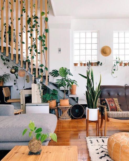 Houseplants In Interior Design Pamono Stories Scandinavian Design Living Room Living Room Scandinavian Home Interior Design