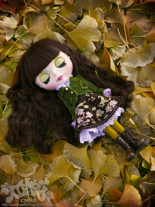 12_AutumnBeniyuki.jpg