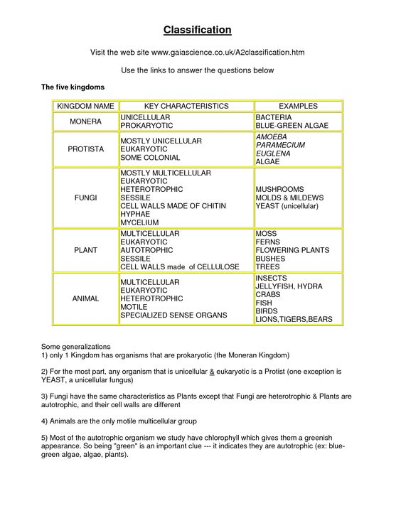 Science Review Sheet 8th Grade - 5th grades science and ...