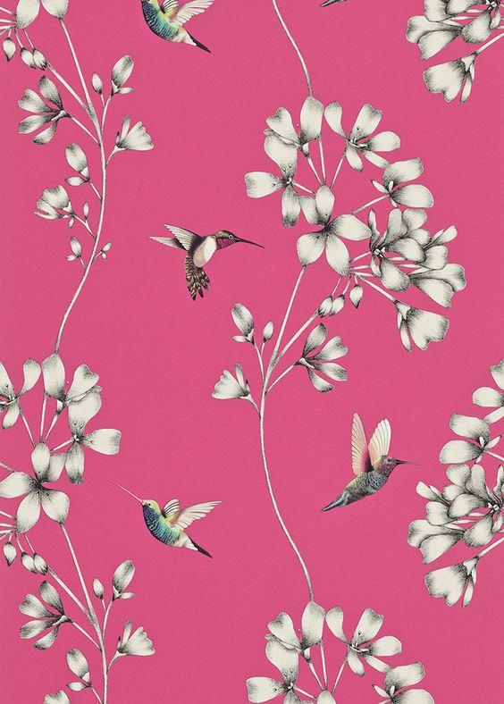 les papiers peints oiseaux pinterest colibris pink et. Black Bedroom Furniture Sets. Home Design Ideas