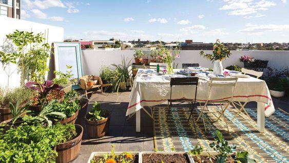 rooftop-garden-table-oct13