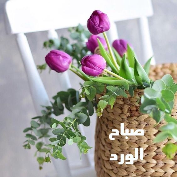 Pin By Rere On صباح الخير Morning Quotes Good Morning Words