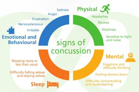 ConcussionHandbook