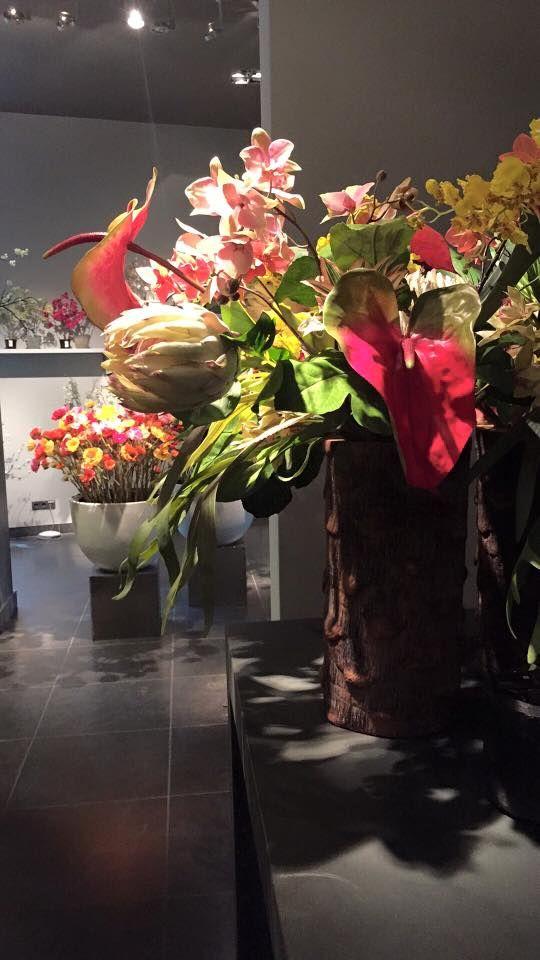 Francoise johansen franjohansen on pinterest mightylinksfo